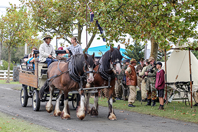 Clydesdale carriage rides - see our programme for more attractions